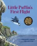 Little Puffins First Flight