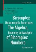 Bicomplex Holomorphic Functions: The Algebra, Geometry and Analysis of Bicomplex Numbers