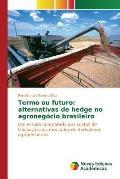 Termo Ou Futuro: Alternativas de Hedge No Agronegocio Brasileiro