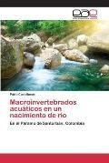 Macroinvertebrados Acuaticos En Un Nacimiento de Rio