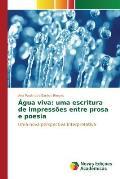 Agua Viva: Uma Escritura de Impressoes Entre Prosa E Poesia