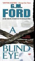 A Blind Eye: A Novel