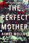 Perfect Mother A Novel