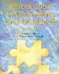 Introduction To Counseling and Guidance (6TH 03 - Old Edition)