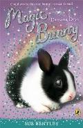 Magic Bunny: Dancing Days