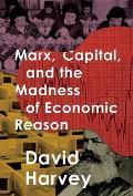 Marx Capital & the Madness of Economic Reason