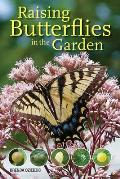 Raising Butterflies in the Garden