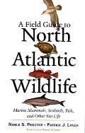 Field Guide to North Atlantic Wildlife Marine Mammals Seabirds Fish & Other Sea Life
