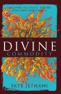 Divine Commodity Discovering a Faith Beyond Consumer Christianity