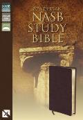 Bible Nasb Burgundy Zondervan Study