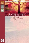 Bible Amplified Black