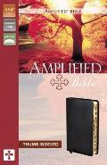 Bible Amplified Black Thumb Indexed Expa