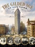 Gilded Age in New York 1870 1910