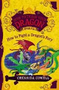 How to Train Your Dragon 12 How to Fight a Dragons Fury