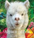 Alpaca Lunch