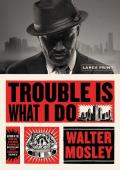 Trouble Is What I Do (Large Print Edition)