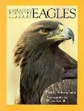 Eagles Sierra Club Wildlife Library