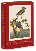 Birds of America The Bien Chromolithographic Edition
