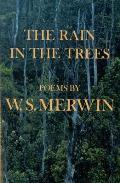 Rain in the Trees