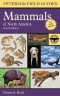 Field Guide to Mammals of North America 4th Edition