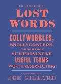 Little Book of Lost Words Collywobbles Snollygosters & 86 Other Surprisingly Useful Terms Worth Resurrecting