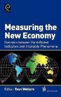 Measuring the New Economy: Statistics Between Hard-Boiled Indicators and Intangible Phenomena