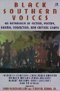 Black Southern Voices An Anthology Of