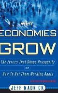 Why Economies Grow