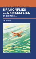 Dragonflies & Damselflies of California
