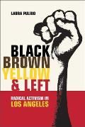 Black Brown Yellow & Left Radical Activism in Los Angeles
