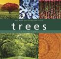 Trees A Visual Guide