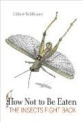 How Not to Be Eaten: The Insects Fight Back