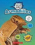 Armadillos (Wild Life Lol!)