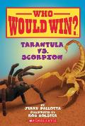 Who Would Win Tarantula vs Scorpion