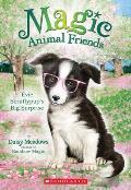 Evie Scruffypup's Big Surprise (Magic Animal Friends #10)