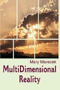 MultiDimensional Reality