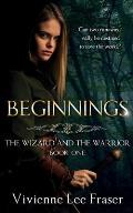 Beginnings: The Wizards and The Warrior Book One