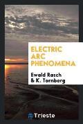 Electric ARC Phenomena
