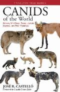 Canids of the World Wolves Wild Dogs Foxes Jackals Coyotes & Their Relatives