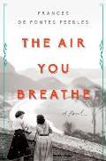 Air You Breathe A Novel