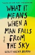 What It Means When a Man Falls from the Sky Stories