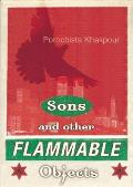 Sons & Other Flammable Objects