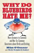 Why Do Bluebirds Hate Me More Answers to Common & Not So Common Questions about Birds & Birding