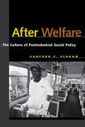 After Welfare The Culture of Postindustrial Social Policy