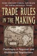 Trade Rules in the Making: Challenges in Regional and Multilateral Negotiations