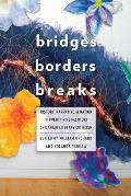 Bridges, Borders, and Breaks: History, Narrative, and Nation in Twenty-First-Century Chicana/o Literary Criticism