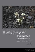 Thinking Throught the Imagination: Aesthetics in Human Cognition
