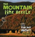 Mountain Pine Beetle Tiny But Mighty