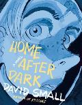 Home After Dark: A Novel