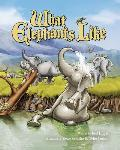 What Elephants Like